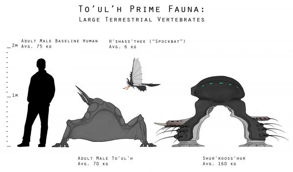 Groundfauna size comparison